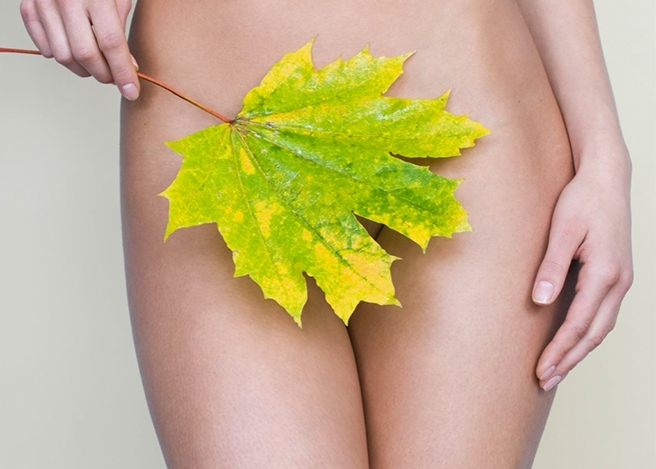 Woman holding a leaf by her pelvic area.
